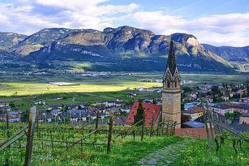 Termeno sulla strada del vino van Gisela Scheffbuch