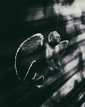 Engel 11 von Jeroen Schipper