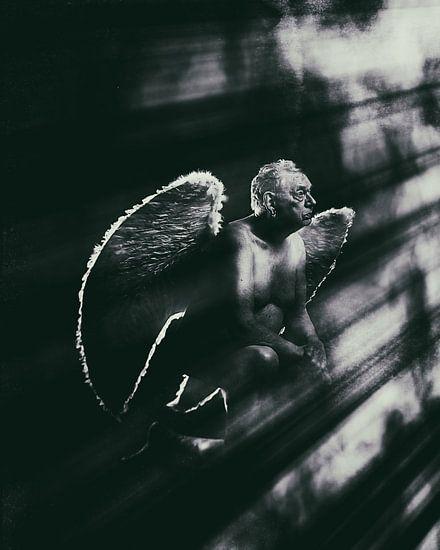 Engel 11 van Jeroen Schipper