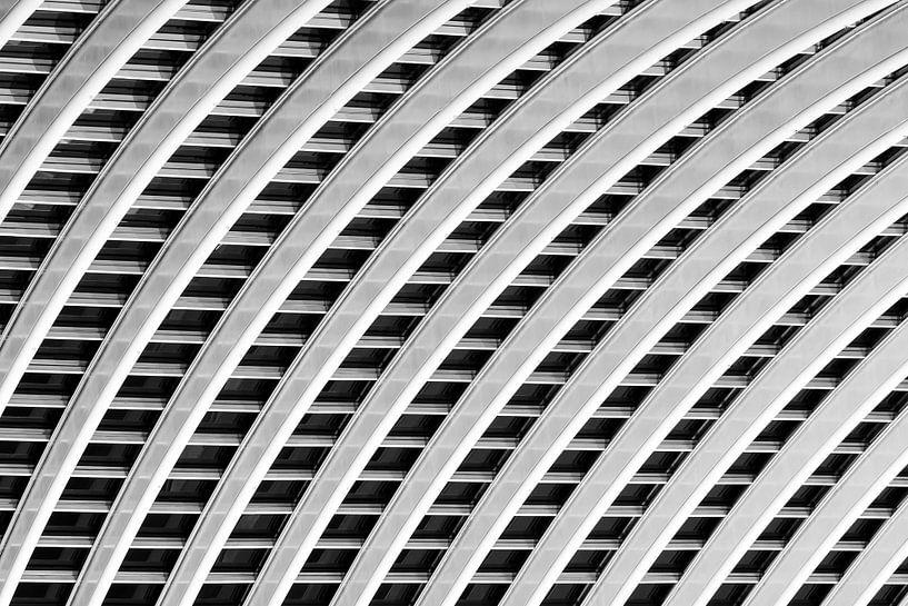 Luik-Guillemins abstract zwart-wit van Dennis van de Water