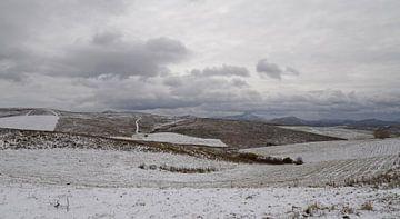Eerste sneeuw in Altai Krai von jaap van der kooij