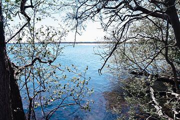 Wunderschöner Naturblick über das Wasser von Jennifer Petterson
