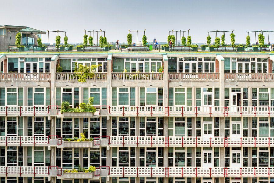 Groothandelsgebouw in Rotterdam van Studio Wanderlove