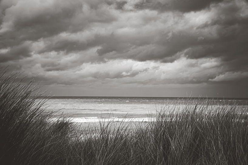 Zandvoort aan Zee van Nicky Kapel
