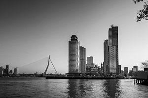 Panoramisch uitzicht op de Erasmusbrug en de kop van zuid in Rotterdam, Nederland.