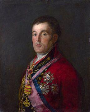 Portret van de hertog van Wellington, Francisco de Goya van