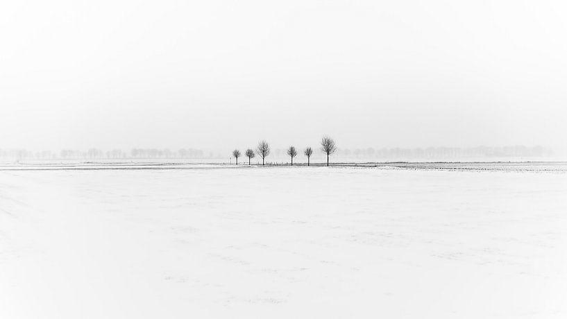 Winters minimalisme van Mark Bolijn