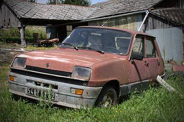 Rostiger Renault 5 von Ton van Waard - Pro-Moois