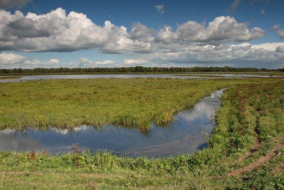 Rust in de Nederlandse polder