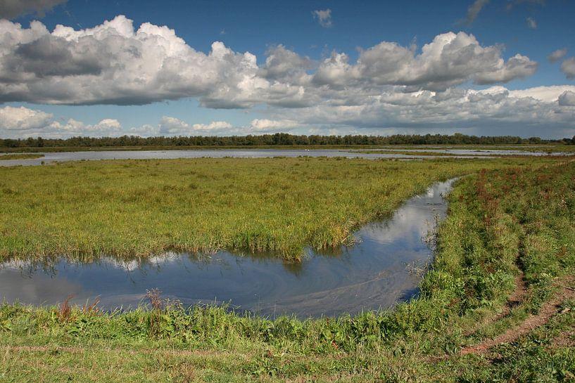 Rust in de Nederlandse polder sur Antwan Janssen
