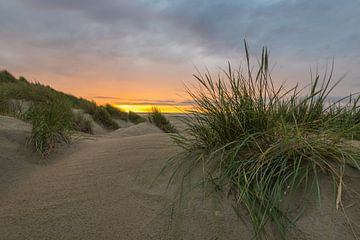 Heerlijke rust in de duinen van