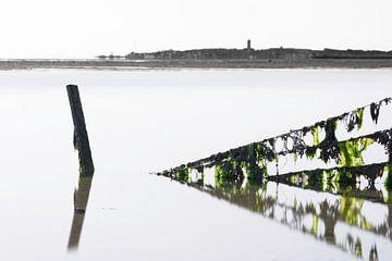 Zeewier groen 4 von Albert Wester Terschelling Photography