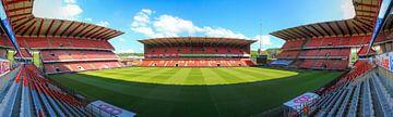 Stade Maurice Dufrasne (Sclessin), Standard Liège van Martijn Mureau