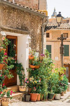 Rue pittoresque de Valldemossa sur Evelien Oerlemans