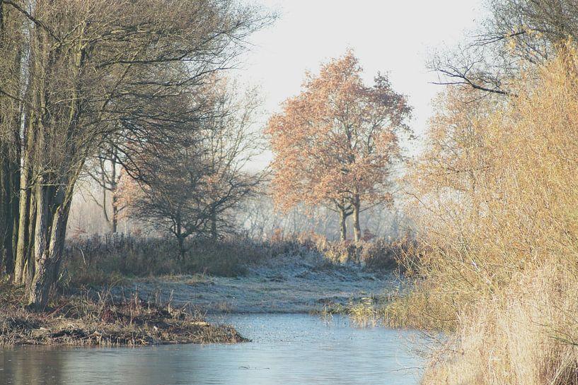 Winterlandschap van Annelies Schreuder