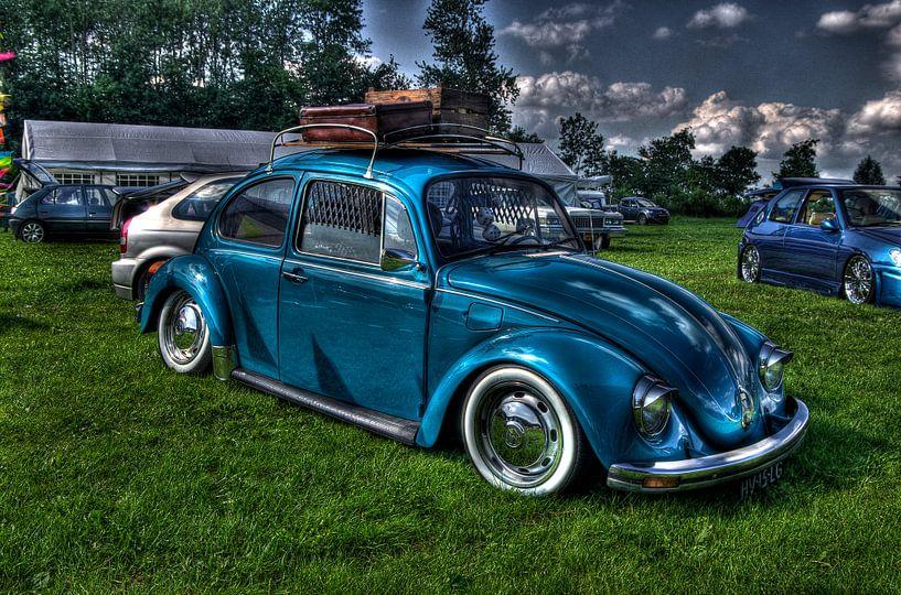 Blue Beetle van Wouter Kok