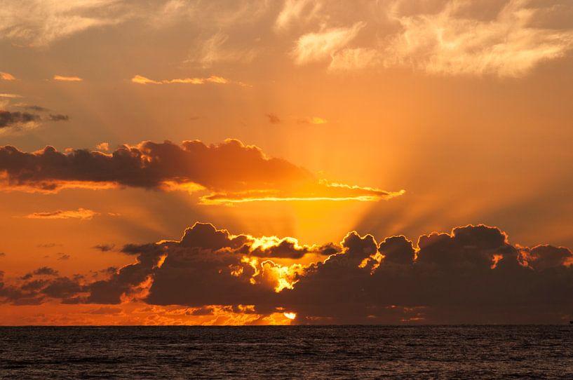Oranje zonsondergang in Hawaii van Adri Vollenhouw