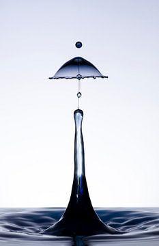 Zwarte druppel in een lampenkap vorm2 van Focco van Eek