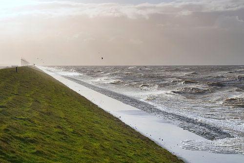 Storm op het IJsselmeer van Sjoerd van der Wal