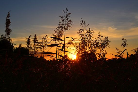 Zonsondergang op een akker in Twente