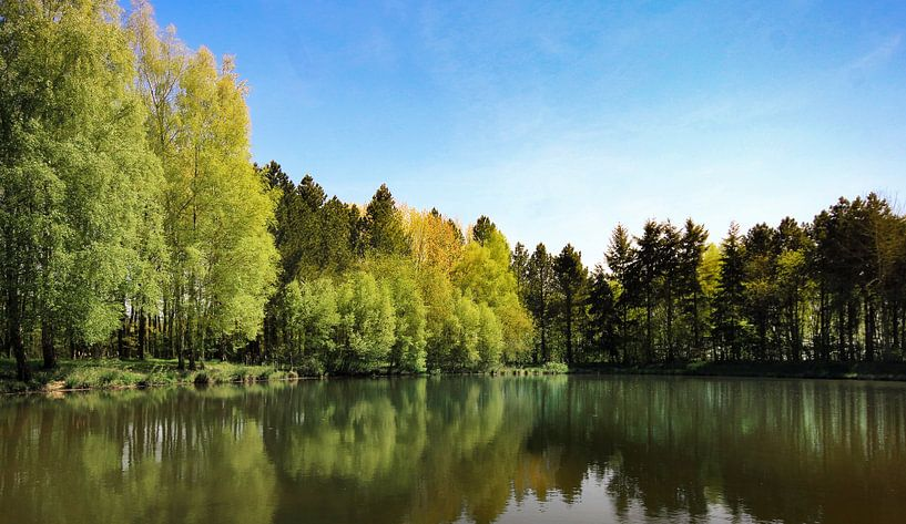 natuur reflectie sur Jan  Sterken