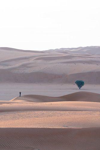 Klein in de Woestijn van Oman