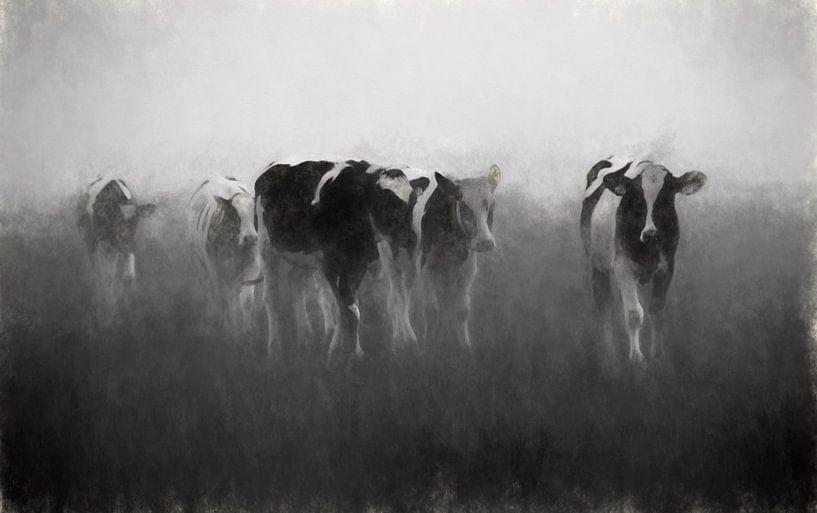 koeien in de mist van Yvonne Blokland