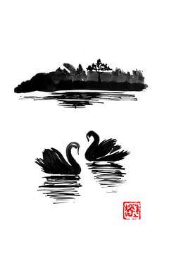 Schwaneninsel von philippe imbert