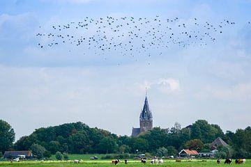 Kerkelijk Uitzicht von Koen Boelrijk Photography