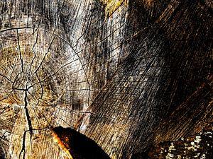 TreeScape 15 van MoArt (Maurice Heuts)