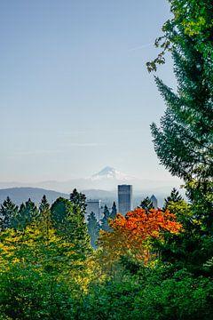 Ein Blick über Portland von Rauwworks