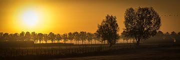 Zonsopkomst in panorama von Herwin van Rijn
