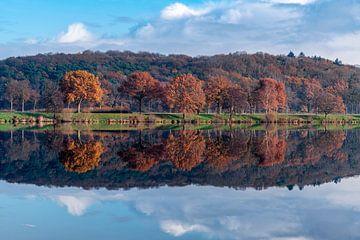 De laatste herfstkleuren van Diana Venis-Kerkhoven