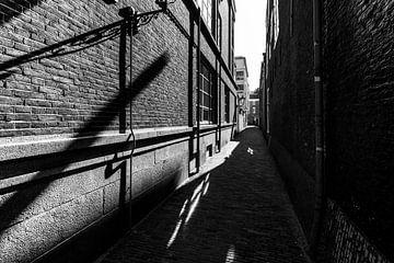 Allée avec des lignes sur Bert-Jan de Wagenaar