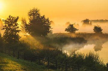 neblige landschaft holland von natascha verbij