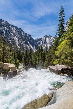 Schoonheid in de Sierra Nevada, Californië van Peter Leenen