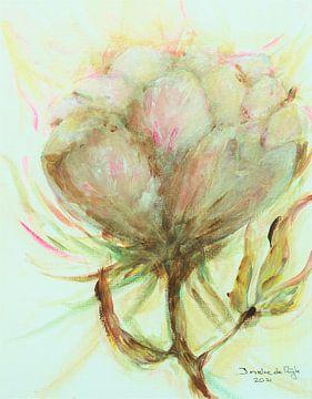 Rosa weiße Rose. von Ineke de Rijk