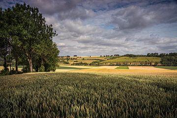 Getreidescheune Ransdalerveld von Rob Boon