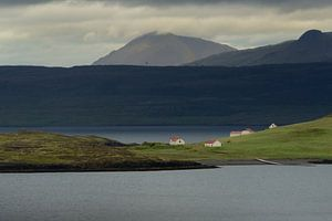 Vergezicht over een fjord in IJsland van