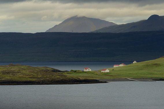 Vergezicht over een fjord in IJsland