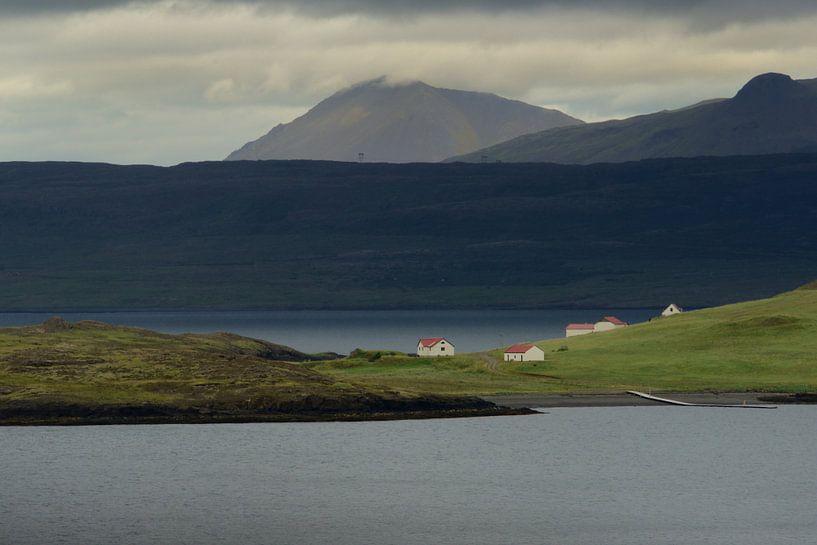Vergezicht over een fjord in IJsland van Gonnie van de Schans
