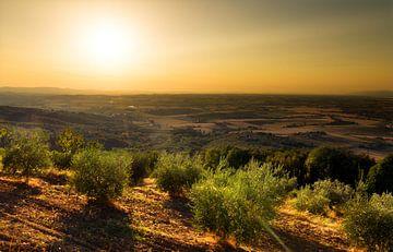 Toscaanse zonsondergang von Dennis van de Water