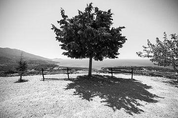 Uitzicht op zee, Samos Griekenland Zwart-wit van Patrick Löbler