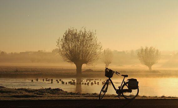 bicycle sunrise