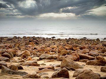 Rotsig Strand in Abel Tasman National Park in Nieuw-Zeeland van Rik Pijnenburg