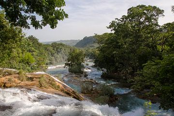Agua Azul Waterfalls, Mexico van Olivier Van Acker