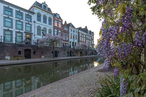 Lente aan de Oudegracht tijdens zonsondergang, Utrecht.