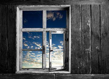 Blick in den Himmel von Jürgen Wiesler