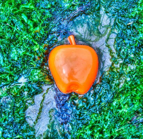 Apple on the Beach - Zeewier