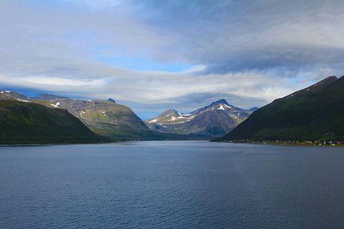 Fjord Noorwegen van